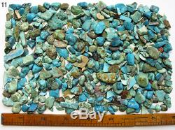 Bisbee Blue Turquoise Nuggets Rough Large 10oz Wholesale Lot From Bisbee