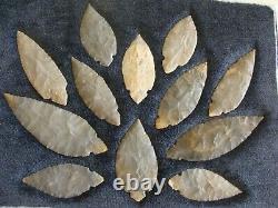 Stermer COA's Authentic 12 piece TURKEY TAIL CACHE Indian Arrowhead Artifact