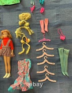 Vintage 60s/70s Barbie-Stacey-Francie-Sunset Malibu PJ-Skooter-Ken collection