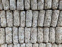 WHOLESALE 100 California White Sage Smudge Sticks/Wands 4-5 Long Free Ship